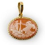 Set in 18k yellow gold Wearable as a cameo pendant  Size 20 mm Total weight 2 gr