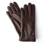 Cashmere Lined Gloves in Nappa Leather 14GL-CA